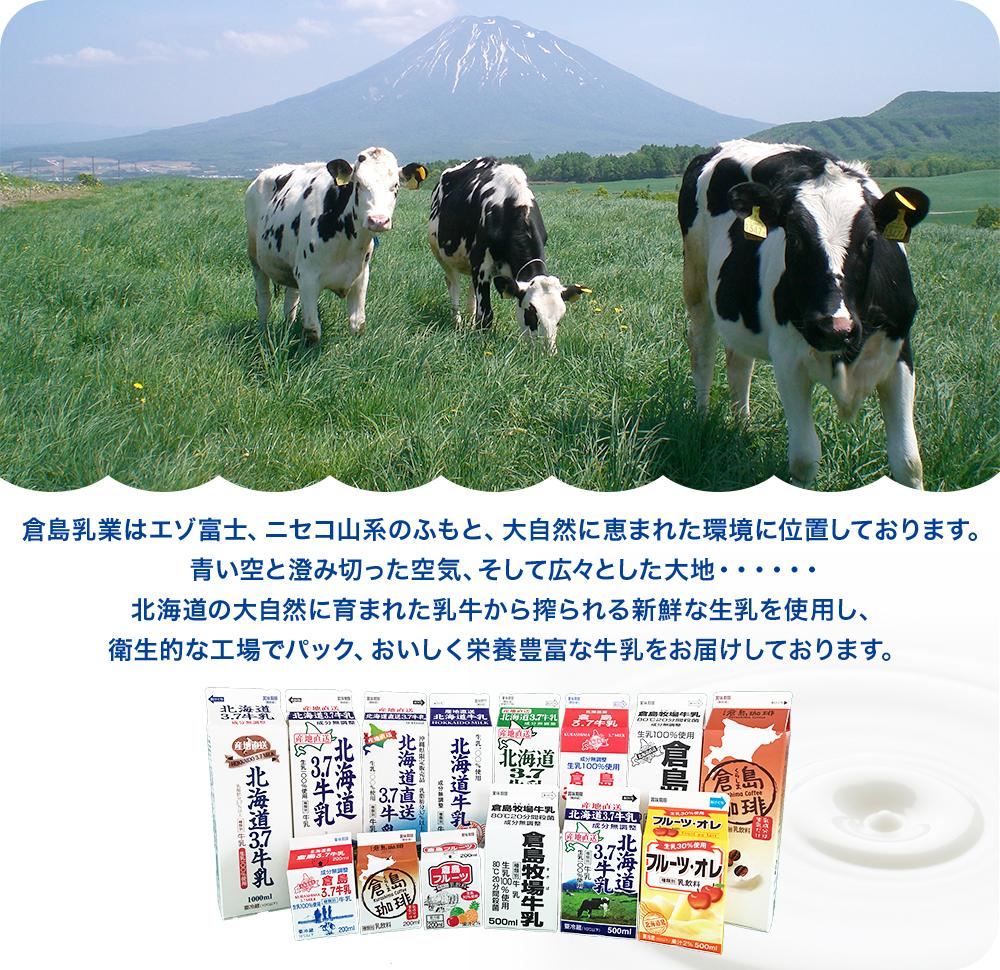 倉島乳業は蝦夷富士、ニセコ山系のふもと、大自然に恵まれた環境に位置しております。青い空と澄み切った空気、そして広々とした大地・・・・・・北海道の大自然に育まれた乳牛から搾られる新鮮な生乳を使用し、衛生的な工場でパック、おいしく栄養豊富な牛乳をお届けしております。